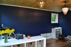 Alyse's Modern-Shed is painted a deep blue and has plenty of natural light.
