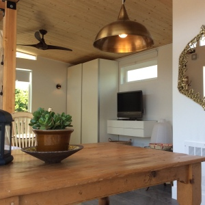 Rebecca and Jeremiah spent months designing the look of their Modern-Shed.