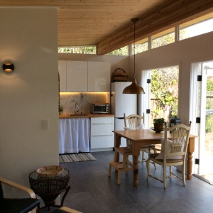 Rebecca and Jeremiah utilized French doors and Modern-shed's transom ceiling to provide the majority of the natural light in the Modern-Shed.