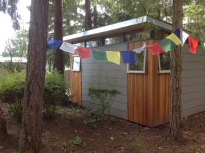 Lin selected a 12' by 16' Modern-Shed art studio with shiplap siding.