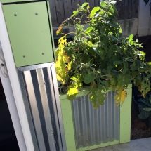 Belinda's friend, a member of the band Flogging Molly, created this customized planter for her that matches her Modern-Shed.