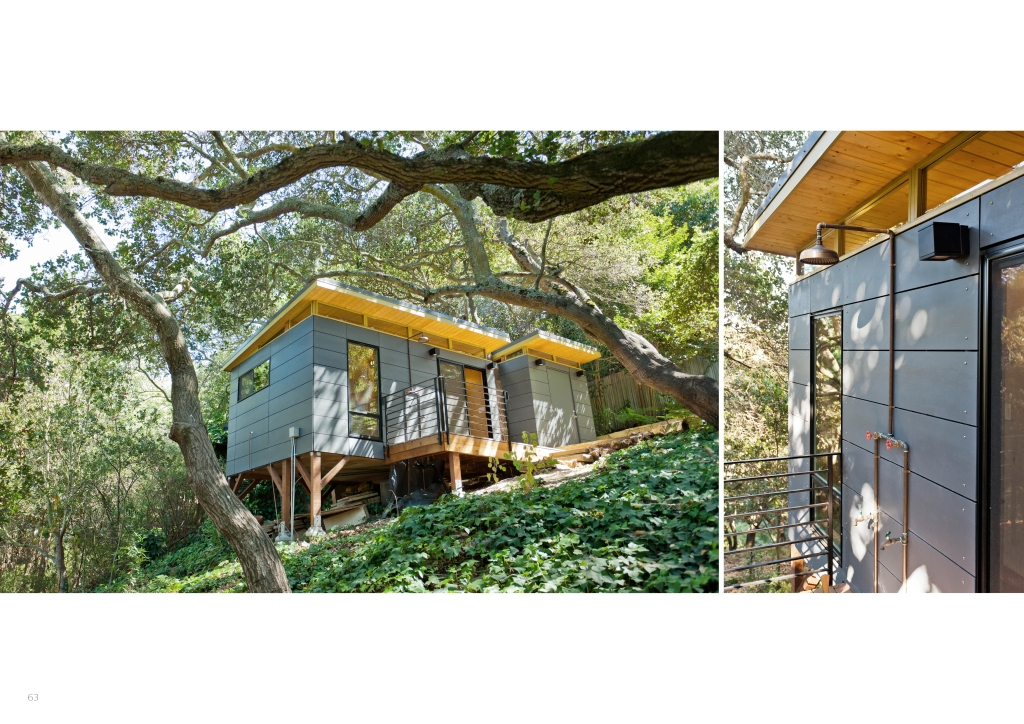 A gray Modern-Shed in quiet woods